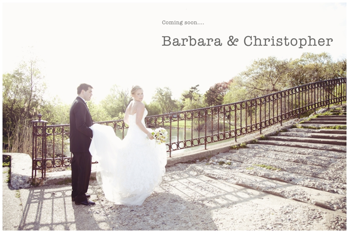lime green inspried/spring wedding/barbi & chris/toledo wedding photographer