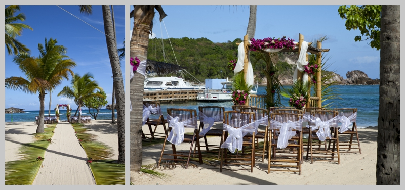Carribean, destination wedding, blue water, beach wedding, palm tree branches